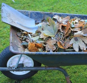 Wheelbarrow yard waste
